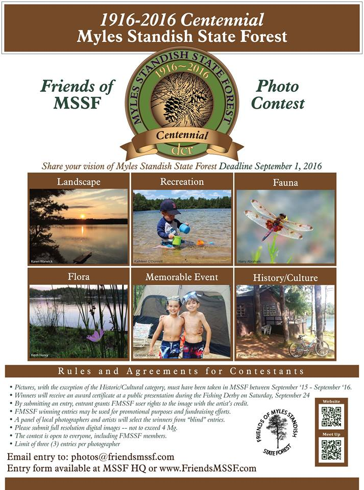 2016 Friends photo contest poster
