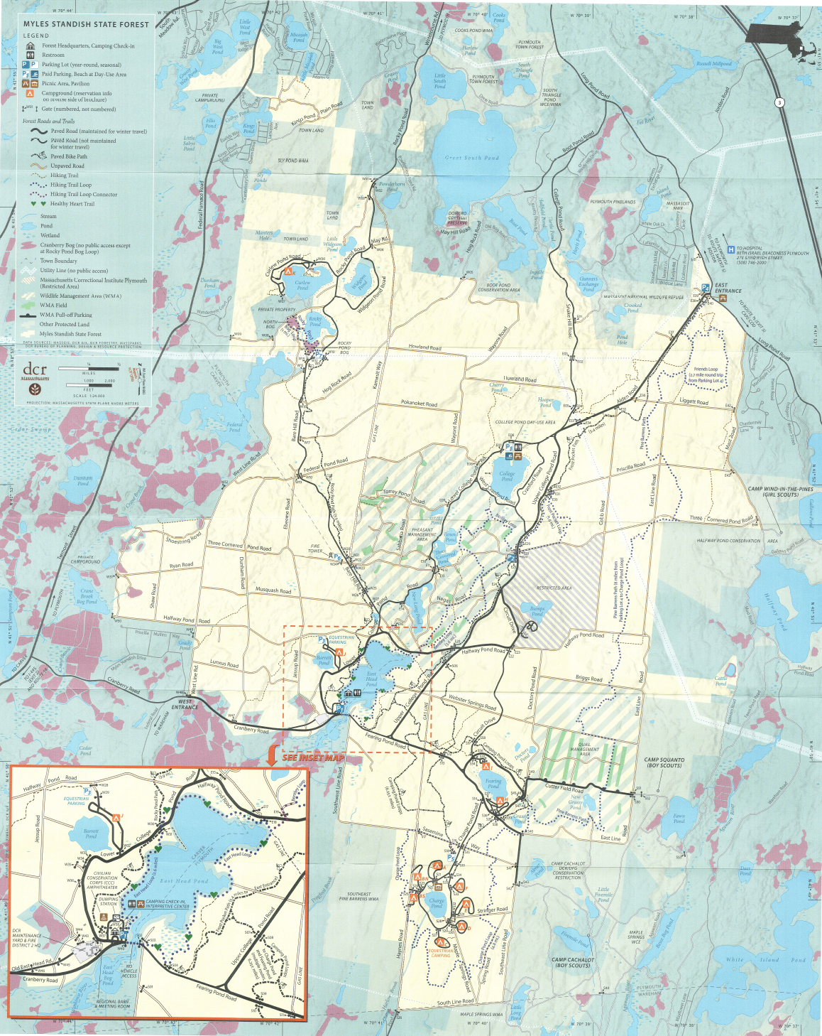 Hiking trails in Myles Standish State Forest